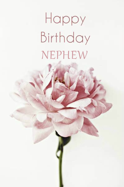 Great Nephew Birthday Cards - Happy Birthday Wishes, Memes, SMS & Greeting eCard Images