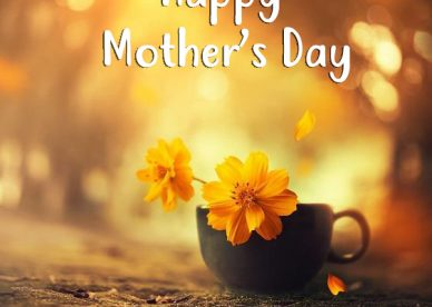 Beautiful Mother's Day Images - Happy Birthday Wishes, Memes, SMS & Greeting eCard Images