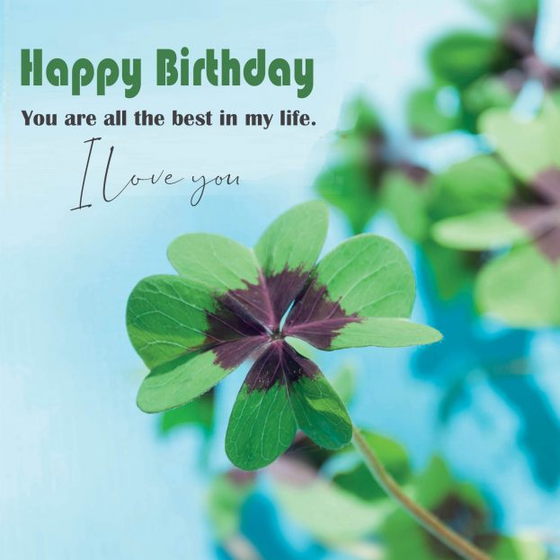 Happy Birthday Girlfriend Life - Happy Birthday Wishes, Memes, SMS & Greeting eCard Images