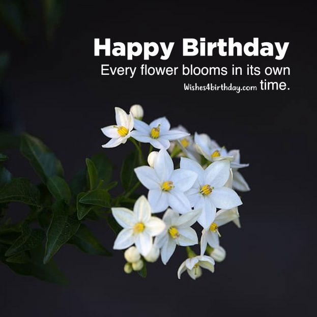 Collection of Birthday flower gifts for her - Happy Birthday Wishes, Memes, SMS & Greeting eCard Images