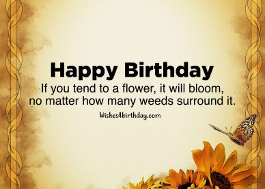 Cute Birthday flower gifts for her - Happy Birthday Wishes, Memes, SMS & Greeting eCard Images