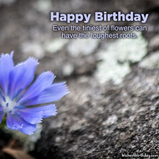 Most delighted and Birthday flower gifts for her - Happy Birthday Wishes, Memes, SMS & Greeting eCard Images