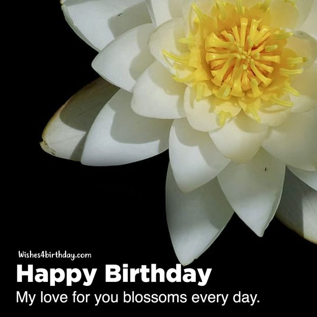 Most innovative Birthday flower gifts for her - Happy Birthday Wishes, Memes, SMS & Greeting eCard Images
