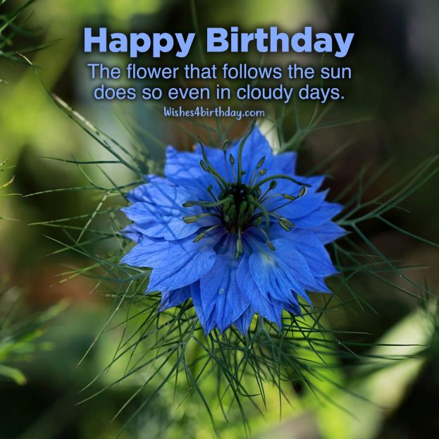Most searched Birthday flower gifts for her - Happy Birthday Wishes, Memes, SMS & Greeting eCard Images
