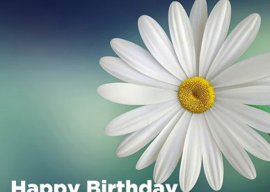 Most shared Birthday flower gifts for her - Happy Birthday Wishes, Memes, SMS & Greeting eCard Images