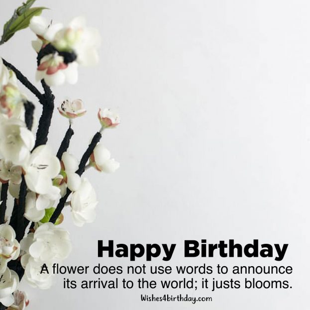 Recent collection of Birthday flower gifts for her - Happy Birthday Wishes, Memes, SMS & Greeting eCard Images