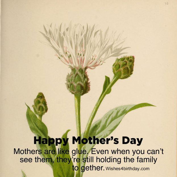 Beautiful and Amazing Happy mother's day ever - Happy Birthday Wishes, Memes, SMS & Greeting eCard Images