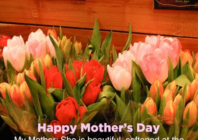 Free mother's Day flower images for Mom - Happy Birthday Wishes, Memes, SMS & Greeting eCard Images