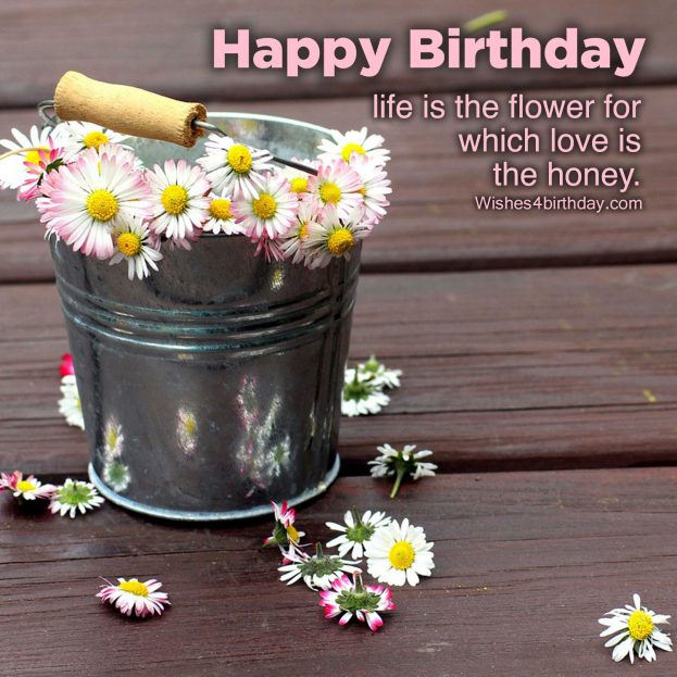 Happy Birthday parties and Birthday Quotes images - Happy Birthday Wishes, Memes, SMS & Greeting eCard Images