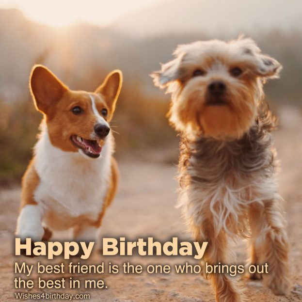 Most liked Birthday wishes quotes - Happy Birthday Wishes, Memes, SMS & Greeting eCard Images