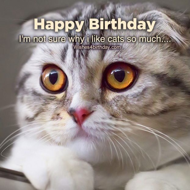 Most shared Birthday text and quote photos - Happy Birthday Wishes, Memes, SMS & Greeting eCard Images