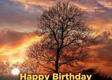 New Birthday Quotes images in 2021 - Happy Birthday Wishes, Memes, SMS & Greeting eCard Images